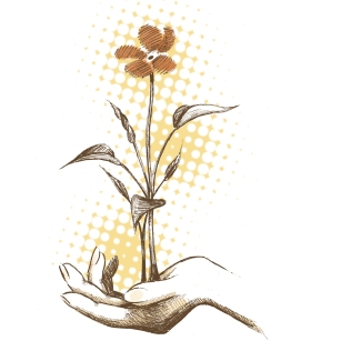 a growing flower in hand