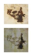 Graphic Skulls